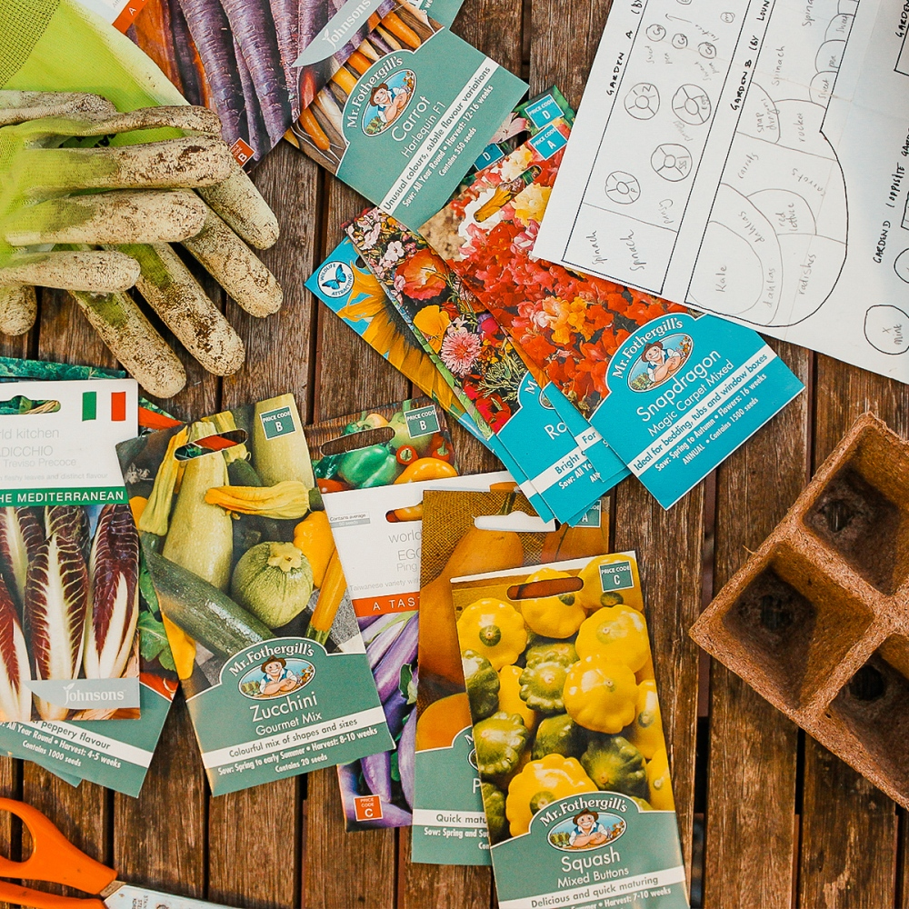 seed-How To Plan Your Own Vegetable Garden