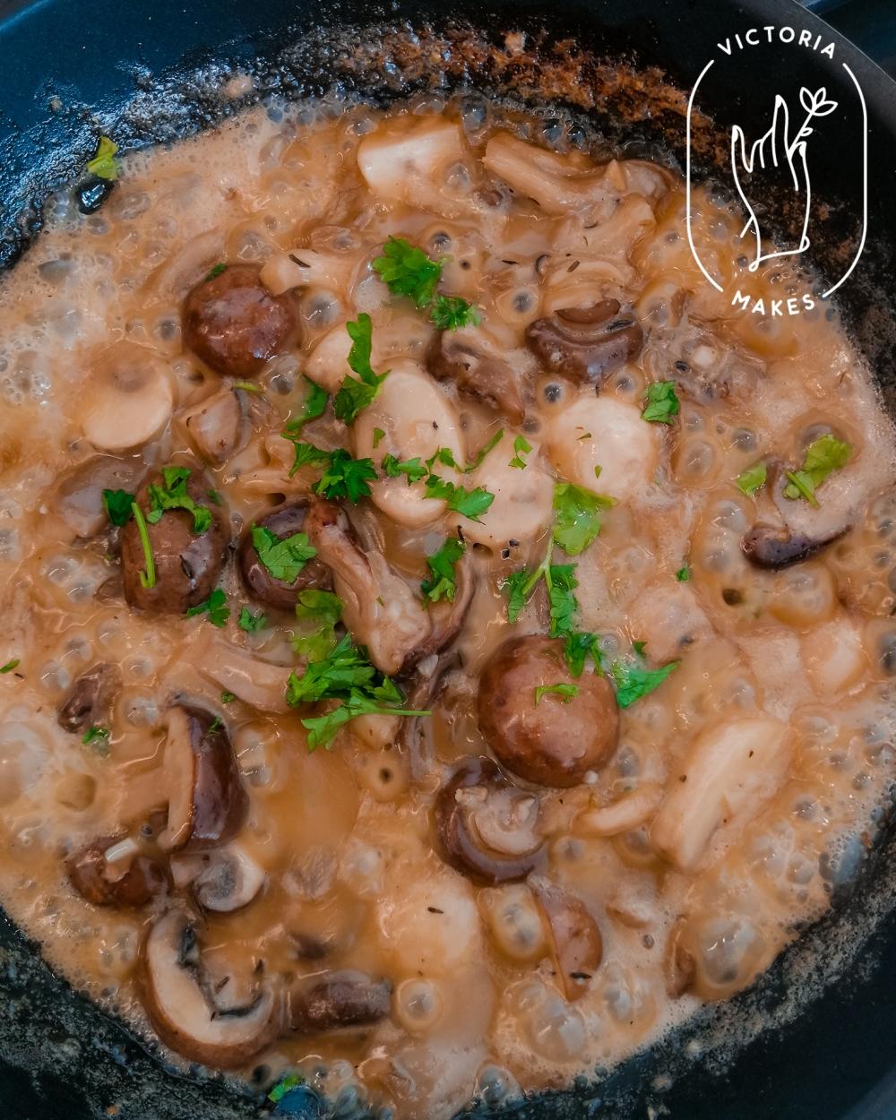 Mushrooms_7